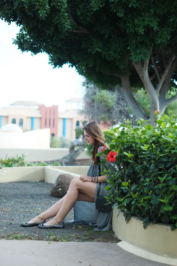 Whaelse auf Fuerteventura