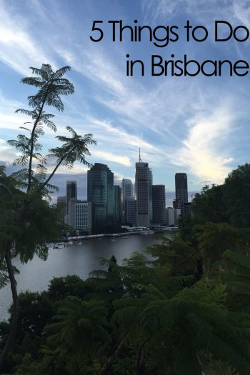5 Dinge, die ihr in Brisbane machen solltet