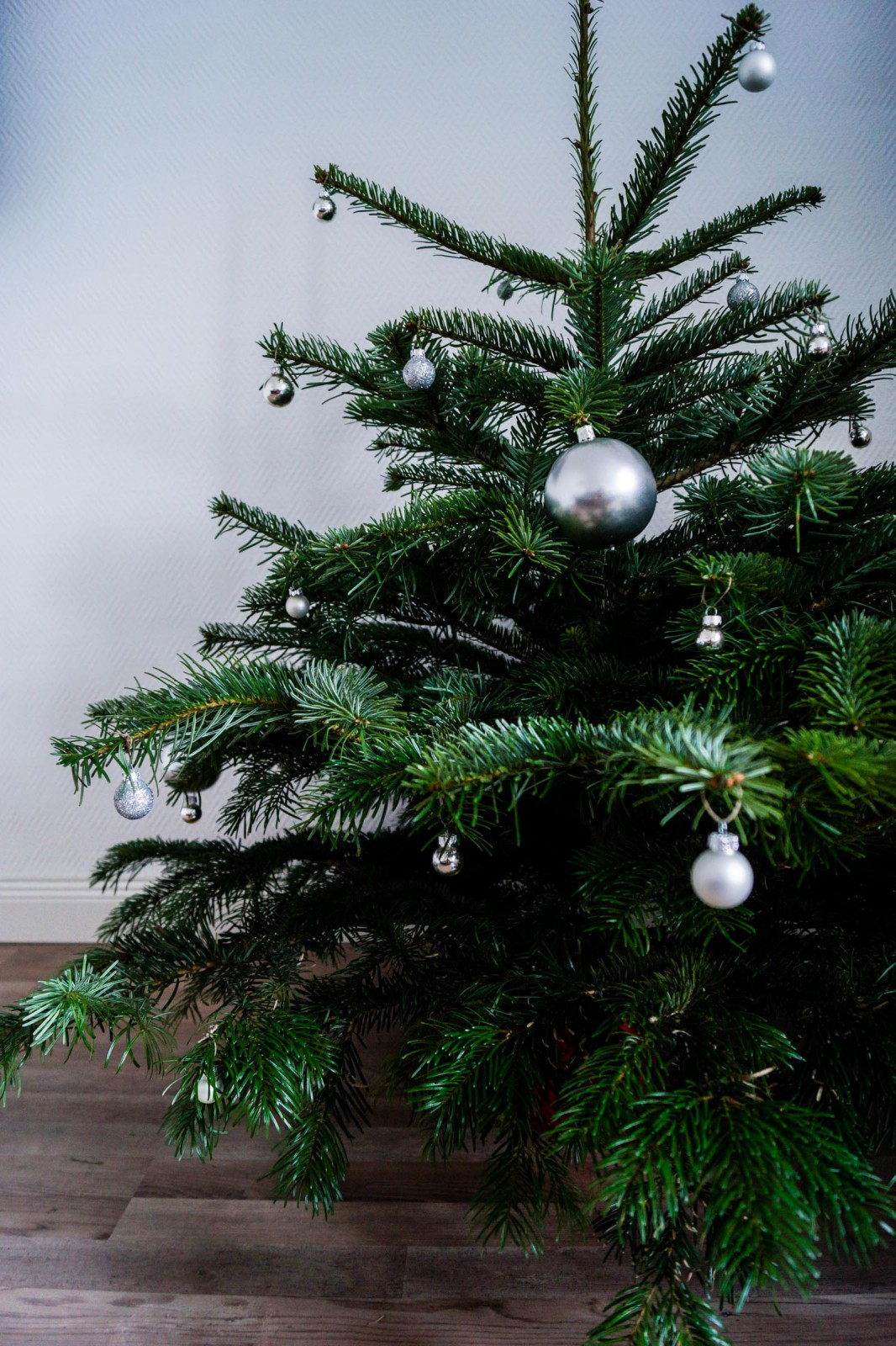 Christmas_Tree-1