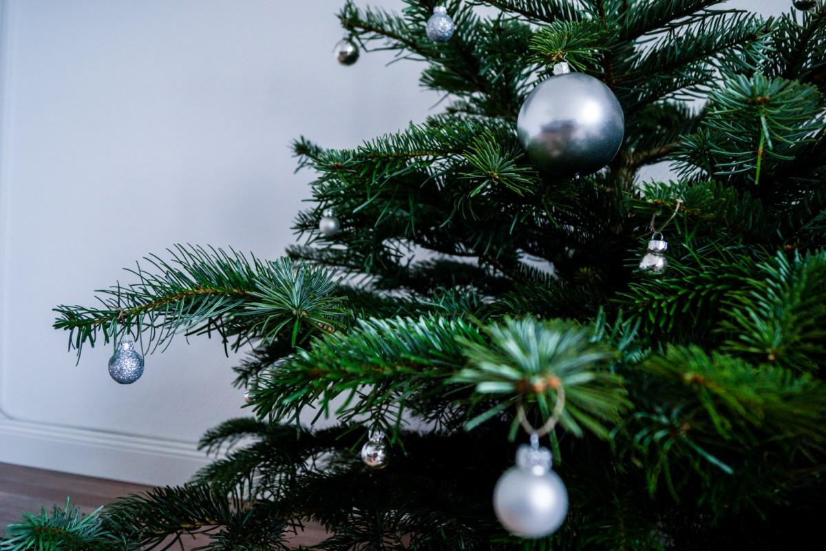 Christmas_Tree-2