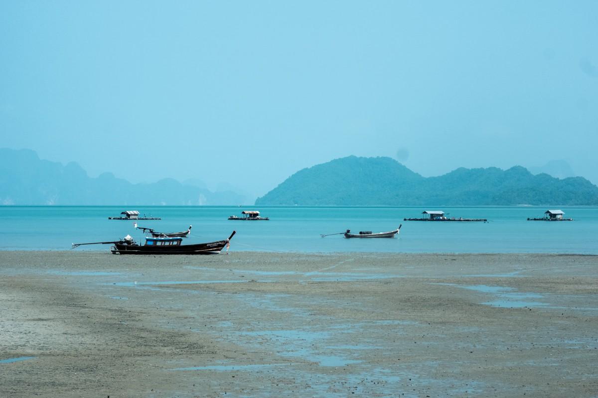 Whaelse auf Phuket