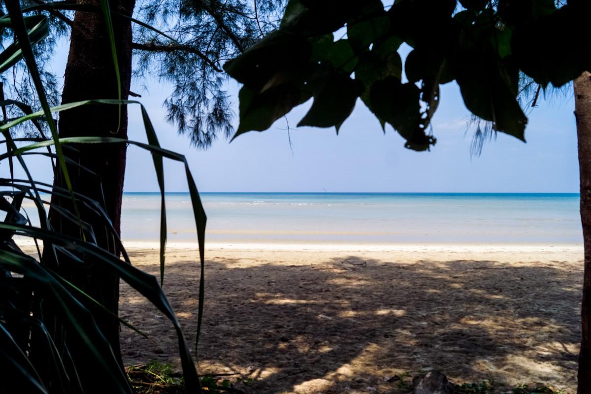 Phuket_Random-6