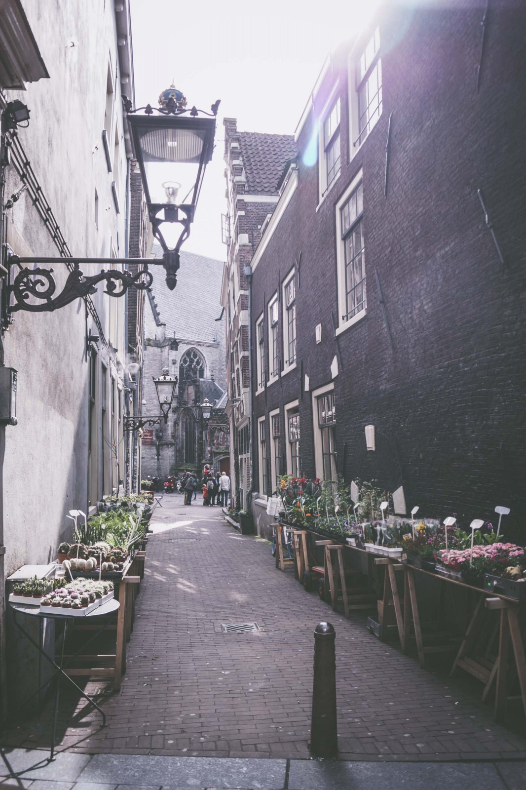 amsterdam travel guide what to do in amsterdam. Black Bedroom Furniture Sets. Home Design Ideas