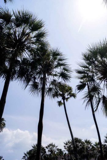 Was sollte man auf Phuket machen?