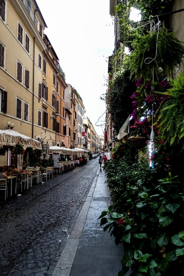 Whaelse in Rom