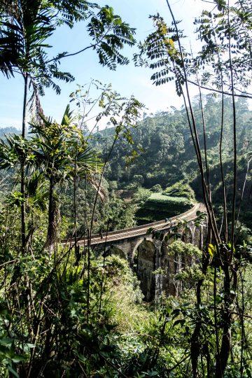 Sri Lanka Reiseführer: Was ihr in Sri Lanka machen solltet
