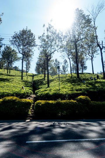 Sri_Lanka_Travel_Guide-3