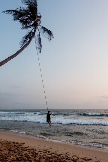 Palmen Schaukel in Sri Lanka