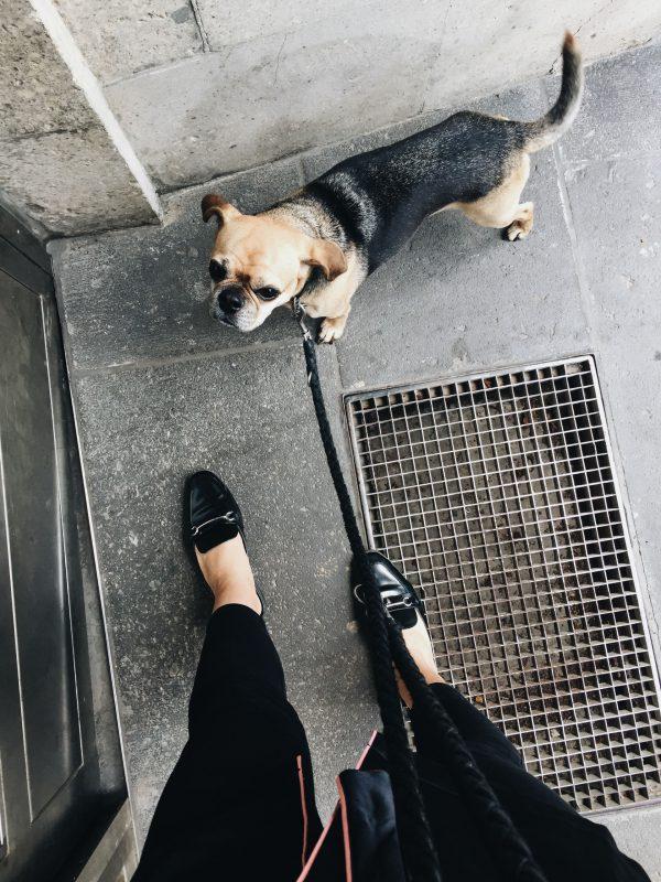 Whaelse_Fashionblog_Berlin_24_7_29-12