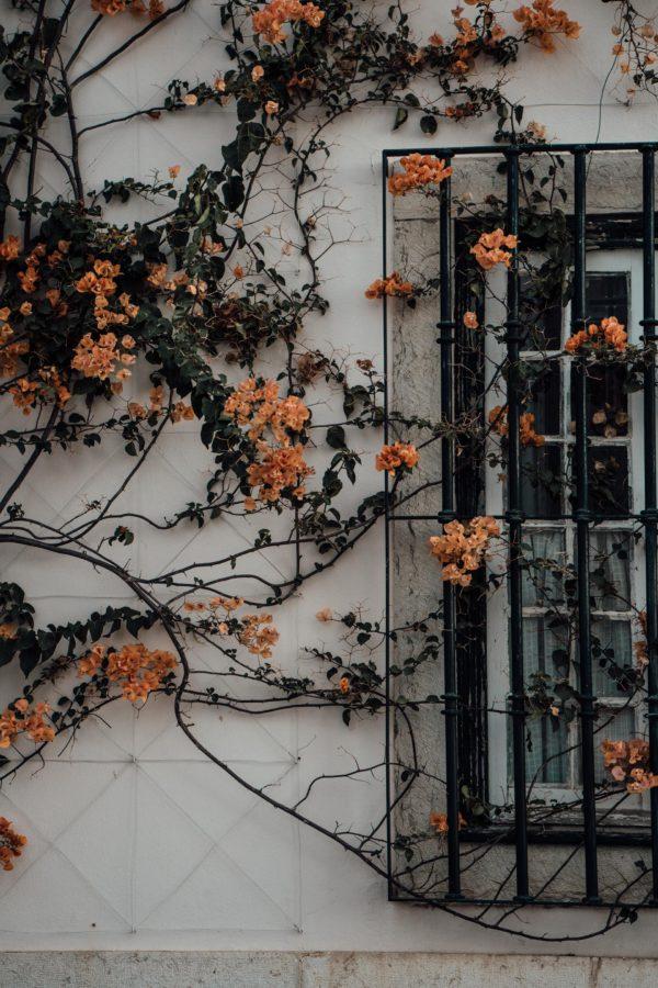Whaelse_Fashionblog_Berlin_Lisbon_Wide_Leg_Pants-17