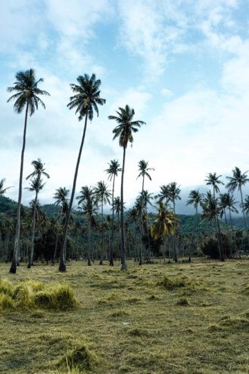Reiseführer Lombok